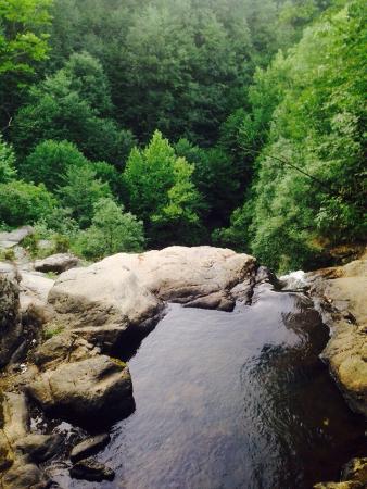 Yalova Kent Ormanı